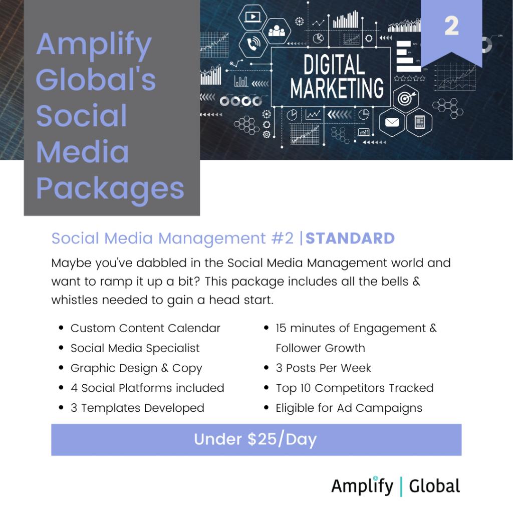 Amplify Global Social Media Content Management Package - Standard